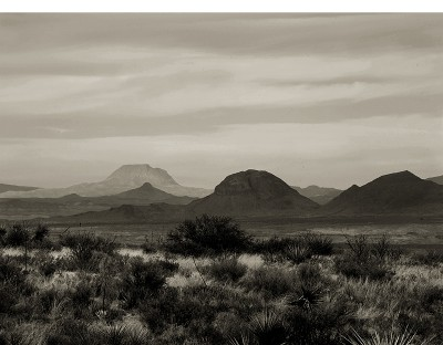 http://schroederworks.com/files/gimgs/th-59_BigBend_Jan2009_085.jpg
